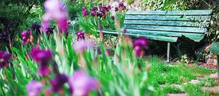 giardino della Valle Cernobbio