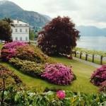 Alla scoperta dei Giardini di Villa Melzi – Lake Como