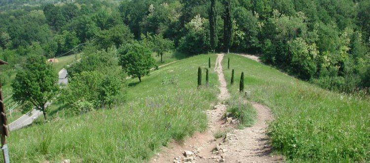 Trekking al Parco di Montevecchia e della Valle del Curone tra Lecco e Brianza