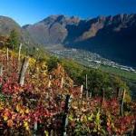 Valtellina. Terra di vini e di sapori tipici – Lake Como