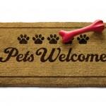 Hotel pet-friendly sul Lago di Como. L'Hotel Posta Moltrasio accoglie il tuo amico a quattro zampe