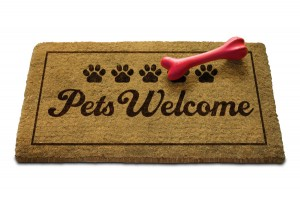 Petfriendly hotel lake como