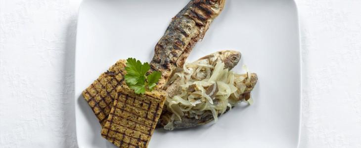 Lake Como's Fish