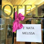 Pink Bow at Hotel Posta Moltrasio: Melissa was born!