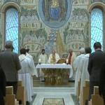 Poltrone, legno e tessuti: l'artigianato comasco in Vaticano