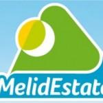 MelidEstate 2013: an open air festival in Melide