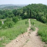 "Trekking to the ""Parco di Montevecchia"" (Montevecchia Park) and to the Curone valley"