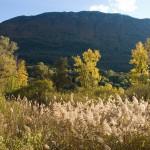 Lago di Piano: splendida riserva naturale sul Lago di Como