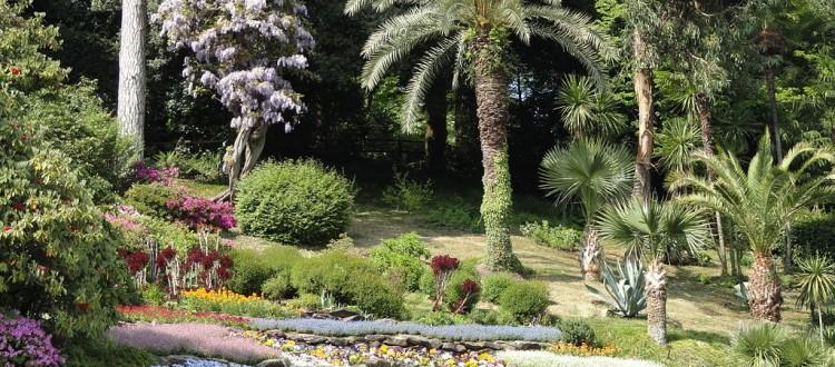 Villa Carlotta botanical garden