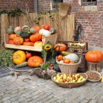 Pumpkin: culinary tradition that was born after the discovery of America