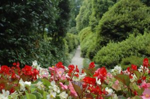 giardino botanico villa carlotta